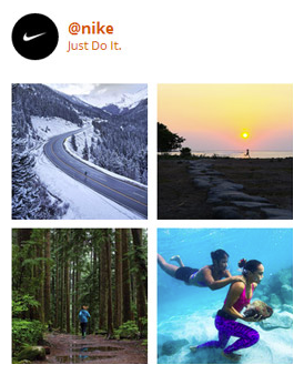 eDirectory Advanced Social Media Plugins - Instagram Plugin